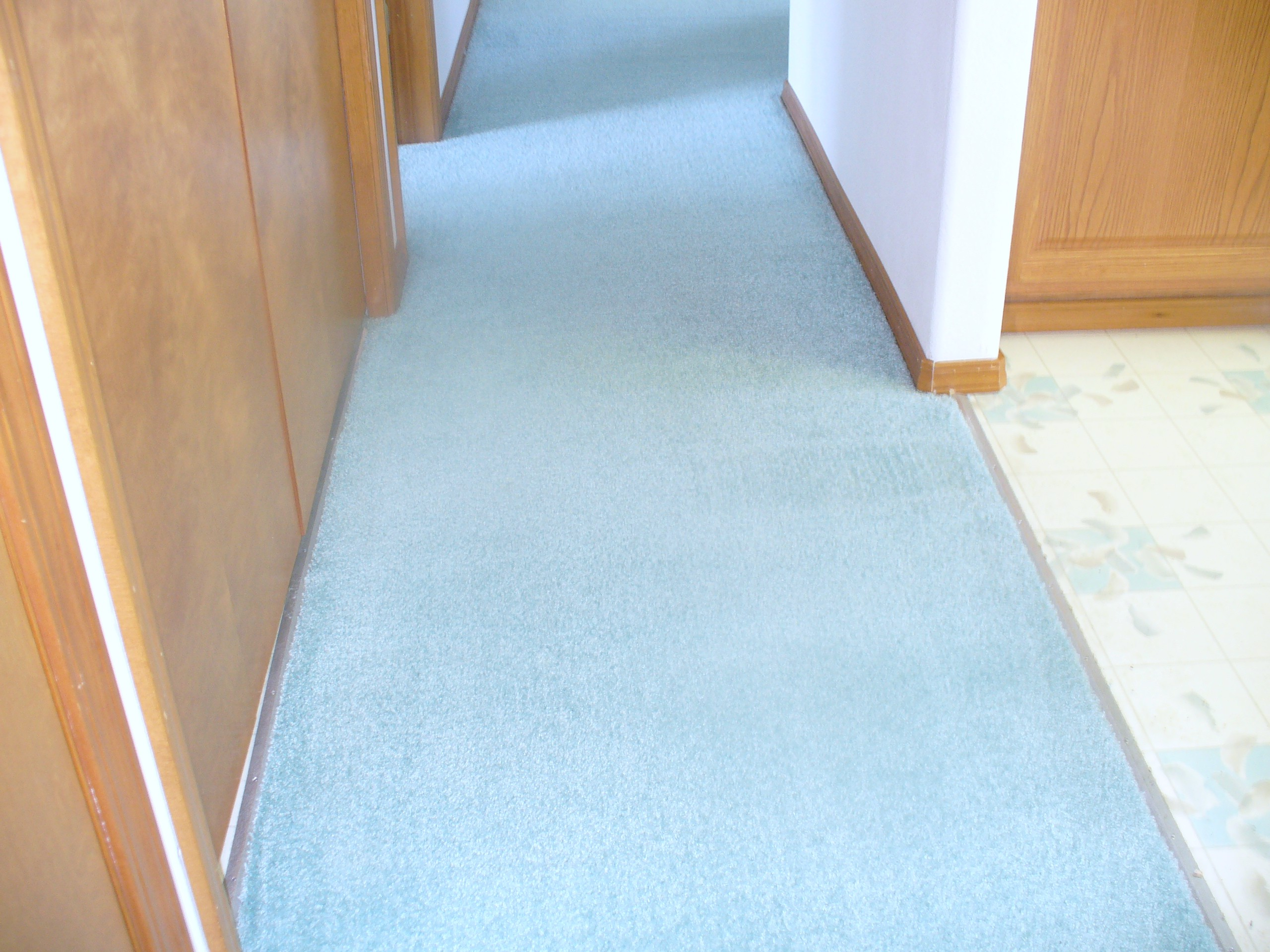 Guarantee system carpet cleaning kennewick richland pasco for Flooring kennewick