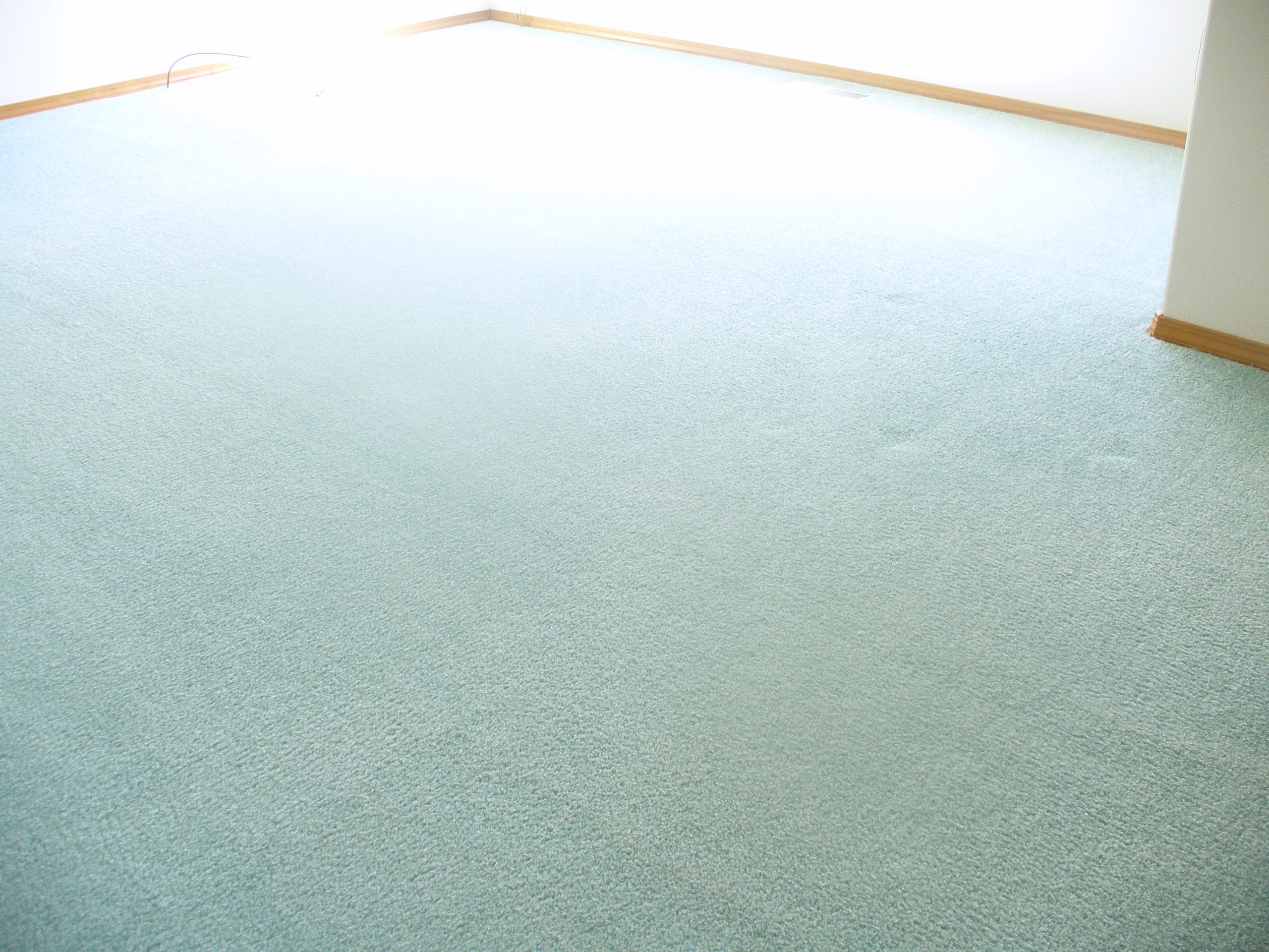 Carpet cleaning pasco wa floor matttroy for Flooring kennewick